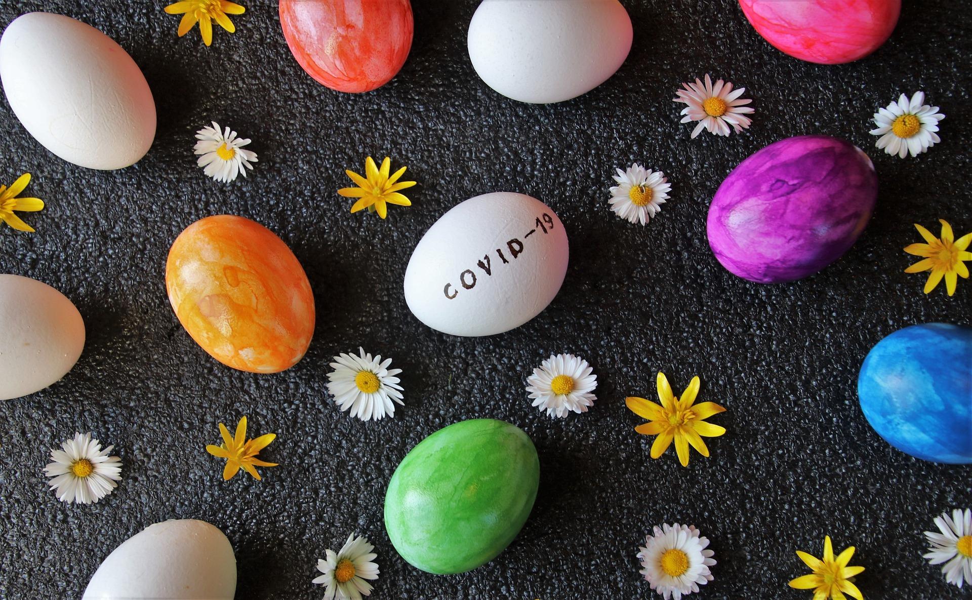 eggs-4991809_1920
